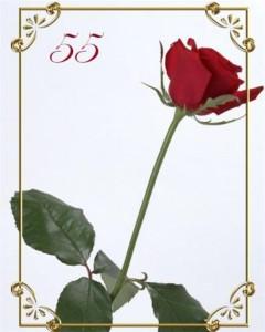 Сценарий юбилея – 55 лет женщине