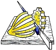 бабочка из лимона1