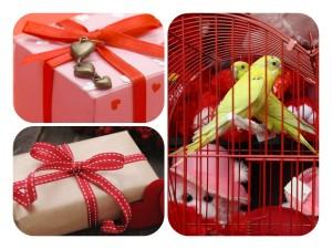 Варианты подарков для парня на 14 февраля