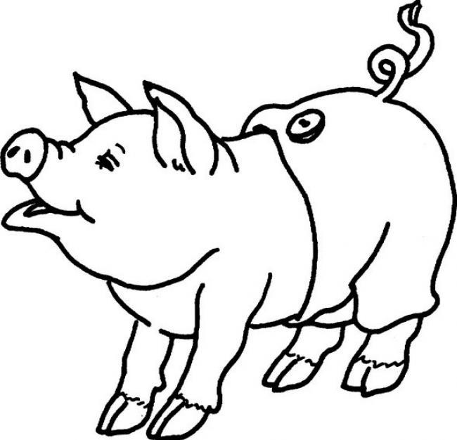 Свинка в штанишках