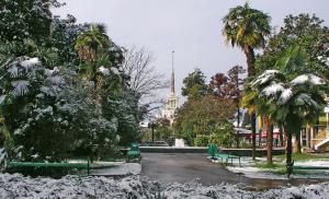 Погода в Сочи на Новый год 2017