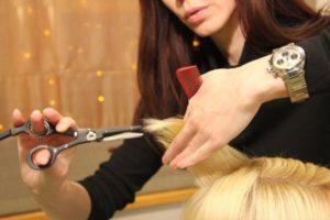 Благоприятные дни для стрижки волос в июне