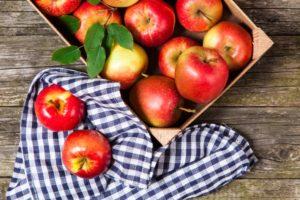 Яблочный Спас в 2016 году