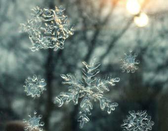 Снежинки из клея ПВА на окно, шаблоны и трафареты